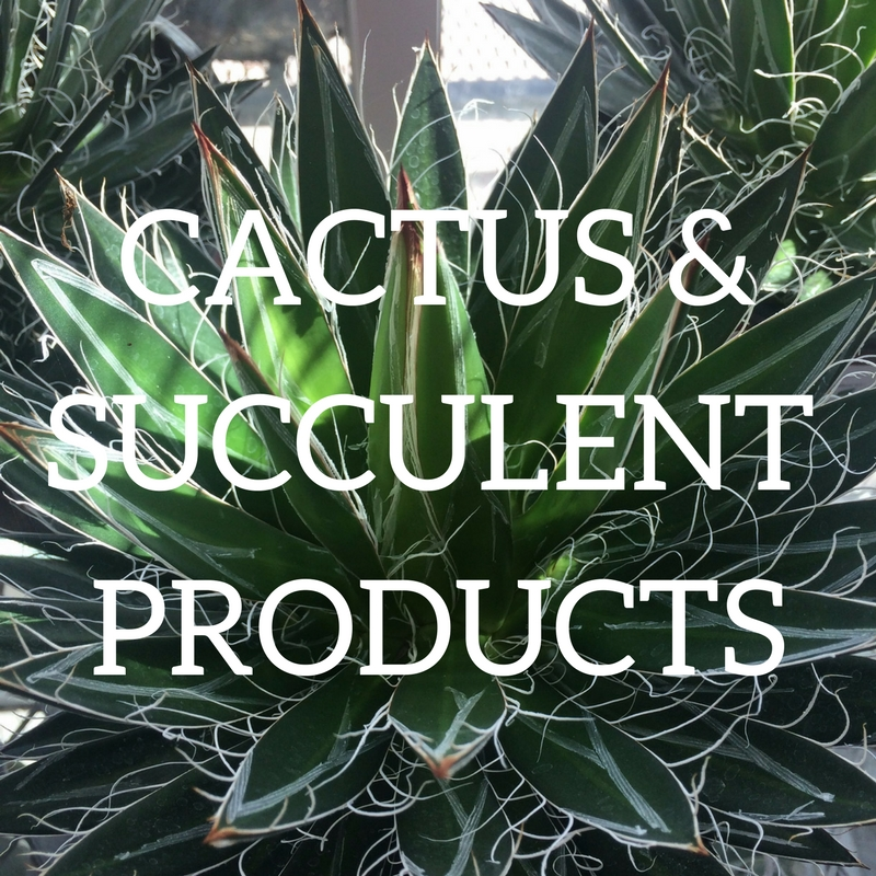 Click here for cactus and succulent products!